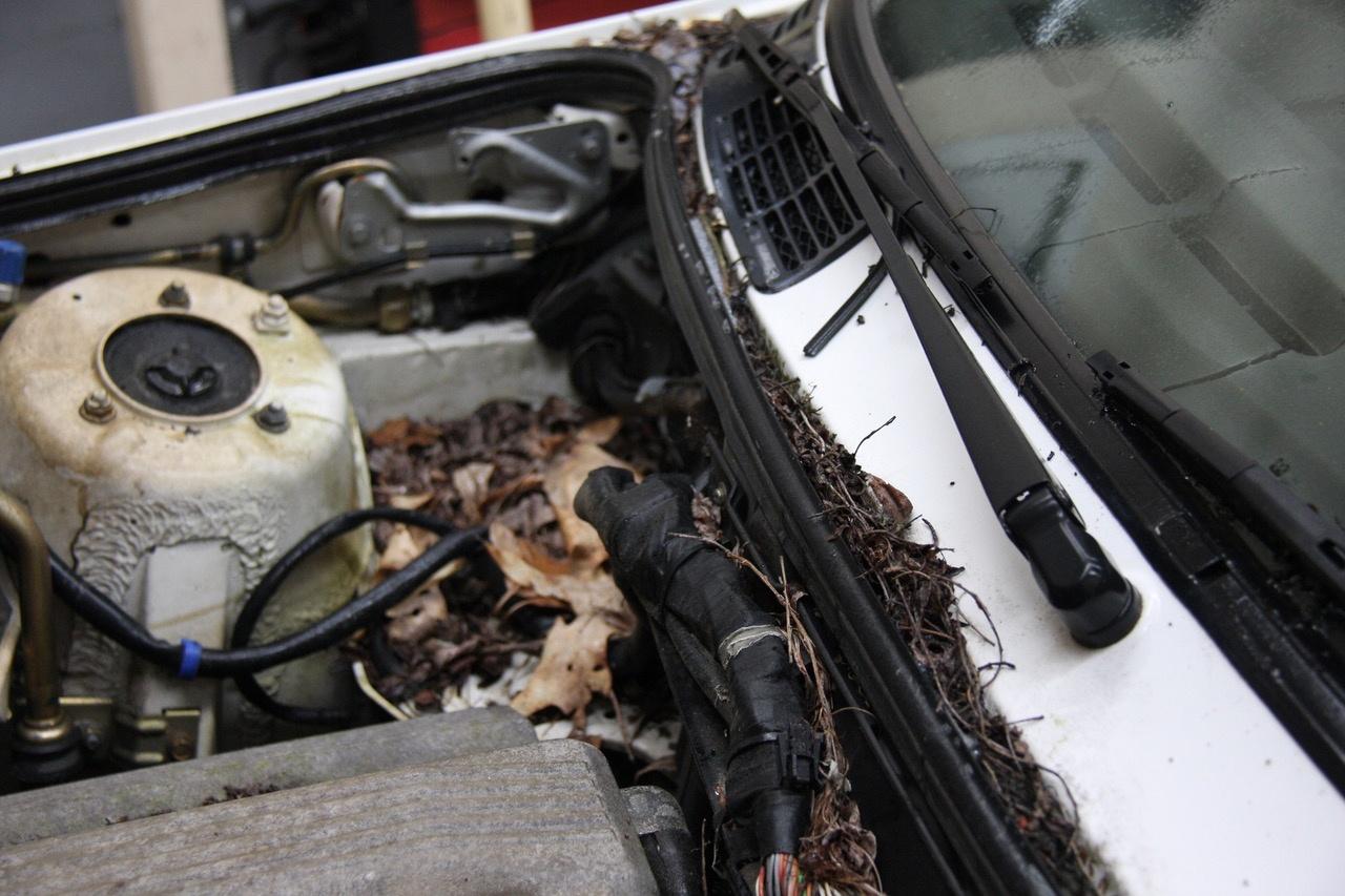 GRM E30 dirty - under the hood