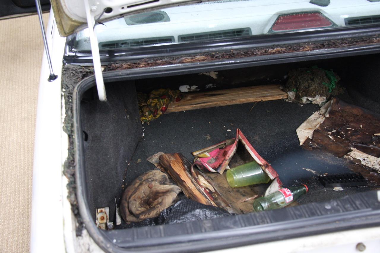 GRM E30 dirty - trunk