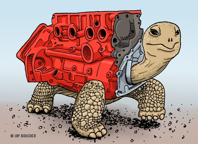 redblock-tortoise-650w
